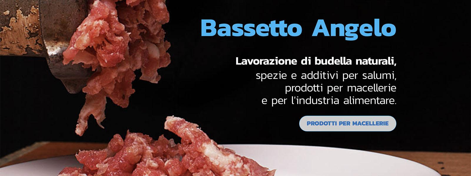 Sito Web Bassetto Angelo